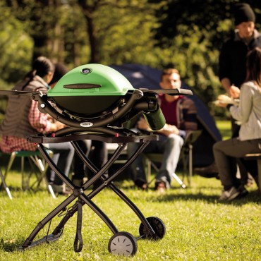 barbacoas gas weber q1200 green carro